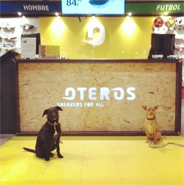 mascotas Oteros